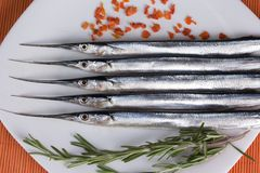 Φρέσκα ψάρια σε μια πιατέλα Στοκ Φωτογραφίες