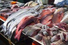Φρέσκα ψάρια στην αγορά ψαριών στο Μπόρνεο Μαλαισία Στοκ Εικόνες