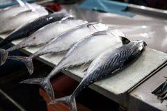 Φρέσκα ψάρια στην αγορά ψαριών στο Μπόρνεο Μαλαισία Στοκ Εικόνα