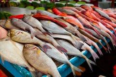 Φρέσκα ψάρια στην αγορά ψαριών στο Μπόρνεο Μαλαισία Στοκ Φωτογραφίες
