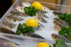 Φρέσκα ψάρια στον πάγο με το λεμόνι Στοκ εικόνες με δικαίωμα ελεύθερης χρήσης