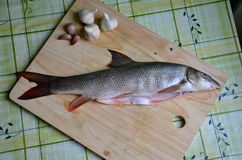 Φρέσκα ψάρια στον πίνακα (βάρβος) Στοκ φωτογραφίες με δικαίωμα ελεύθερης χρήσης