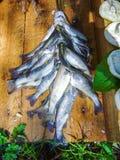 Φρέσκα ψάρια στον πίνακα Στοκ Φωτογραφία