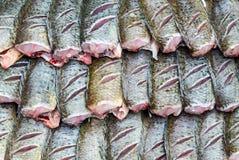 Φρέσκα ψάρια Στοκ φωτογραφία με δικαίωμα ελεύθερης χρήσης