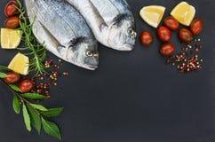 Φρέσκα ψάρια dorado στο μαύρο τέμνοντα πίνακα πλακών Τοπ όψη Στοκ εικόνες με δικαίωμα ελεύθερης χρήσης