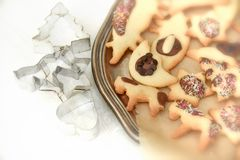Φρέσκα ψημένα μπισκότα Χριστουγέννων Στοκ φωτογραφία με δικαίωμα ελεύθερης χρήσης