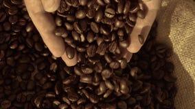 Φρέσκα ψημένα φασόλια καφέ που χύνουν έξω των κοίλων χεριών σε έναν burlap σάκο φιλμ μικρού μήκους
