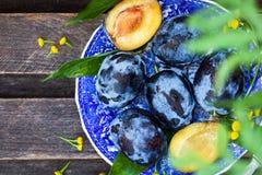 Φρέσκα ώριμα μπλε δαμάσκηνα στο πιάτο Στοκ Εικόνα