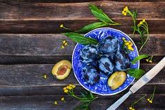 Φρέσκα ώριμα μπλε δαμάσκηνα στο πιάτο Στοκ φωτογραφία με δικαίωμα ελεύθερης χρήσης