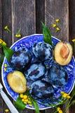 Φρέσκα ώριμα μπλε δαμάσκηνα στο πιάτο Στοκ εικόνα με δικαίωμα ελεύθερης χρήσης