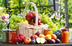 Φρέσκα ώριμα οργανικά φρούτα στον κήπο ισορροπημένο σιτηρέσιο Στοκ εικόνα με δικαίωμα ελεύθερης χρήσης