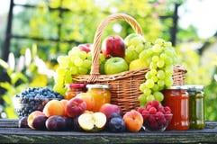 Φρέσκα ώριμα οργανικά φρούτα στον κήπο ισορροπημένο σιτηρέσιο Στοκ Εικόνα