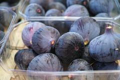 Φρέσκα ώριμα πορφυρά γλυκά φρούτα σύκων, νόστιμα τρόφιμα Στοκ εικόνες με δικαίωμα ελεύθερης χρήσης
