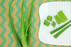 Φρέσκα aloe φύλλα της Βέρα, Aloe που τεμαχίζεται Στοκ Εικόνα