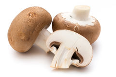 Φρέσκα champignon μανιτάρια που απομονώνονται στο λευκό Στοκ εικόνα με δικαίωμα ελεύθερης χρήσης