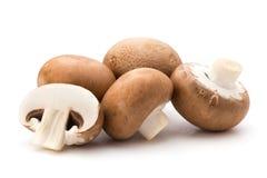 Φρέσκα champignon μανιτάρια που απομονώνονται στο λευκό Στοκ φωτογραφία με δικαίωμα ελεύθερης χρήσης