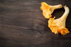 Φρέσκα Chanterelle μανιτάρια στο αγροτικό ξύλινο υπόβαθρο Στοκ φωτογραφία με δικαίωμα ελεύθερης χρήσης