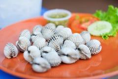 Φρέσκα cockles εξυπηρετούν στο πορτοκαλί πιάτο με τη σάλτσα, την ντομάτα και το αγγούρι θαλασσινών για το υπόβαθρο Στοκ φωτογραφία με δικαίωμα ελεύθερης χρήσης