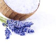 Φρέσκα lavender λουλούδια και κύπελλο με το άλας που απομονώνεται Στοκ Εικόνες