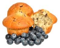 φρέσκα muffins βακκινίων βακκινίων στοκ φωτογραφία