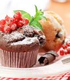 φρέσκα muffins στοκ φωτογραφίες