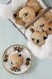 φρέσκα muffins Στοκ Φωτογραφία