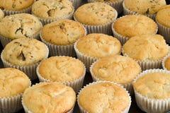 φρέσκα muffins Στοκ Εικόνες