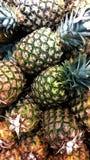 Φρέσκα pinapples Στοκ φωτογραφία με δικαίωμα ελεύθερης χρήσης
