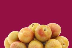 Φρέσκα pluots (armeniaca salicina × Prunus) Στοκ Φωτογραφίες