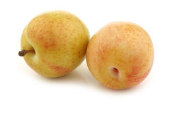 Φρέσκα pluots (armeniaca salicina × Prunus) Στοκ φωτογραφίες με δικαίωμα ελεύθερης χρήσης