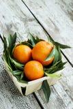 Φρέσκα tangerines μανταρίνια σε ένα ψάθινο καλάθι Στοκ Εικόνες