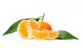 φρέσκα tangerines Στοκ Φωτογραφία