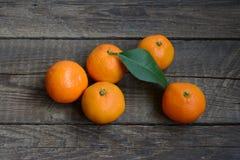 φρέσκα tangerines Στοκ Εικόνες