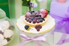 Φρέσκα tarts μούρων που γεμίζουν με την κρέμα, το σμέουρο, το βακκίνιο, την κονιοποιημένη ζάχαρη και το εύγευστο επιδόρπιο βατόμο στοκ εικόνα