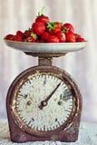 φρέσκες αναδρομικές ώριμες φράουλες κλιμάκων στοκ εικόνες με δικαίωμα ελεύθερης χρήσης