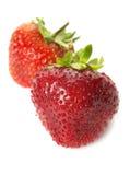 φρέσκες απομονωμένες ώριμες φράουλες Στοκ Φωτογραφία