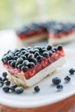 Φρέσκες βακκίνια και πίτα βακκινίων Στοκ φωτογραφίες με δικαίωμα ελεύθερης χρήσης