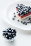 Φρέσκες βακκίνια και πίτα βακκινίων Στοκ Φωτογραφίες