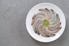 Φρέσκες γαρίδες/γαρίδα Στοκ φωτογραφία με δικαίωμα ελεύθερης χρήσης