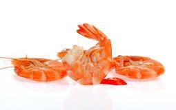 Φρέσκες γαρίδες που απομονώνονται στο άσπρο υπόβαθρο Στοκ Φωτογραφίες