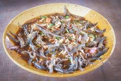 Φρέσκες γαρίδες σαλάτας Στοκ φωτογραφίες με δικαίωμα ελεύθερης χρήσης