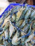 Φρέσκες γαρίδες στην αγορά Στοκ Εικόνες
