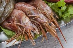 φρέσκες γαρίδες Στοκ Φωτογραφίες