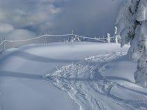 φρέσκες διαδρομές χιονι&o Στοκ Εικόνες