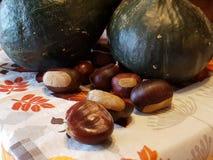 Φρέσκες κάστανο και κολοκύθα Στοκ Εικόνα