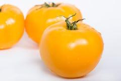 Φρέσκες κίτρινες ντομάτες Στοκ Φωτογραφίες