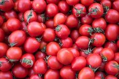 Φρέσκες και Juicy ντομάτες κερασιών στο στάβλο για την πώληση Στοκ εικόνα με δικαίωμα ελεύθερης χρήσης