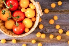 Φρέσκες κόκκινες και κίτρινες ντομάτες Στοκ Εικόνες