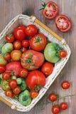 Φρέσκες κόκκινες και πράσινες ντομάτες σε ένα καλάθι Στοκ φωτογραφίες με δικαίωμα ελεύθερης χρήσης