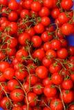 Φρέσκες κόκκινες ντομάτες κερασιών στοκ φωτογραφία με δικαίωμα ελεύθερης χρήσης